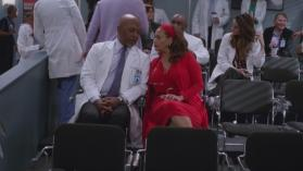 Grey's Anatomy 14, 20