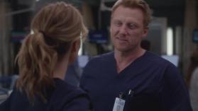 Grey's Anatomy 15, 12