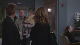 Grey's Anatomy 15, 13