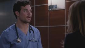 Grey's Anatomy 15, 17