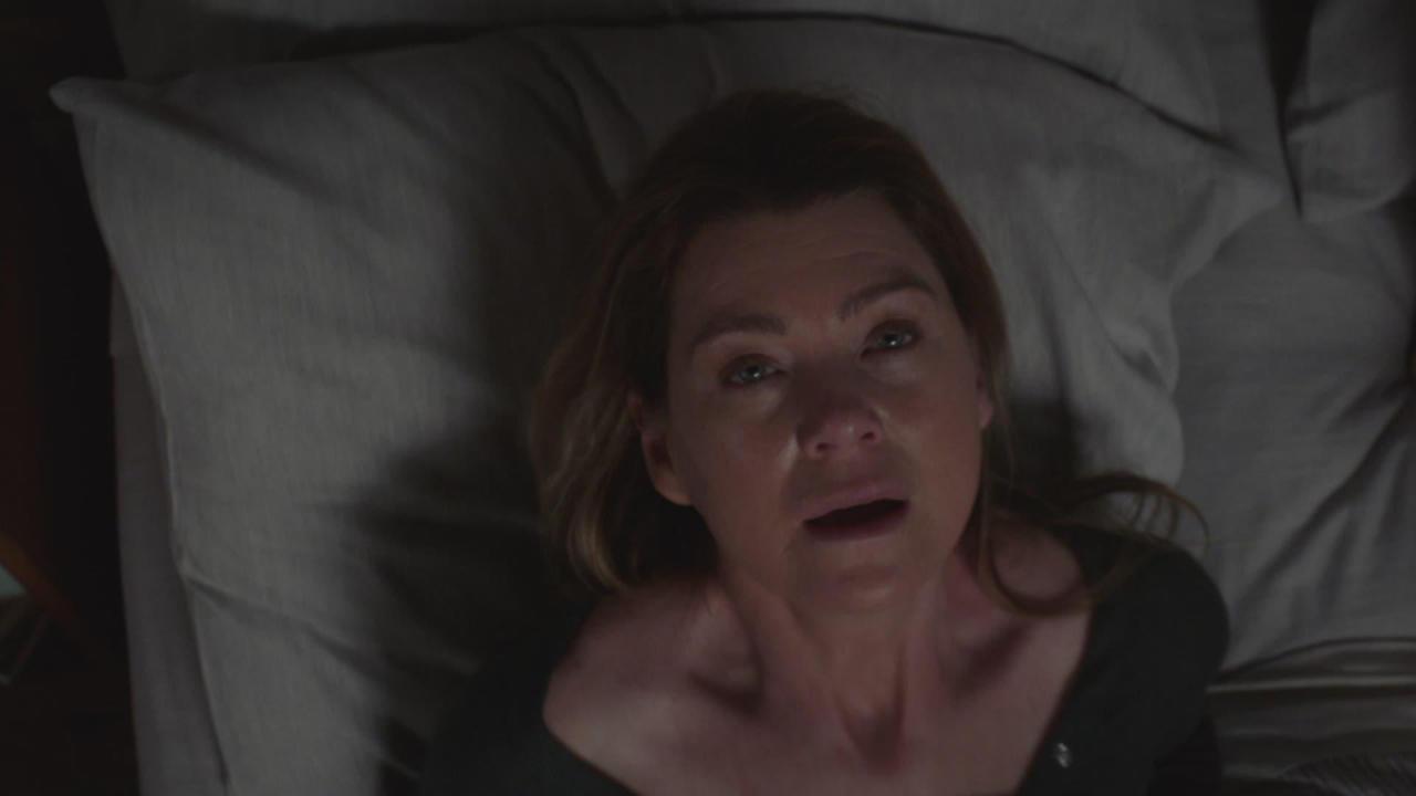 Grey's Anatomy 15, 24