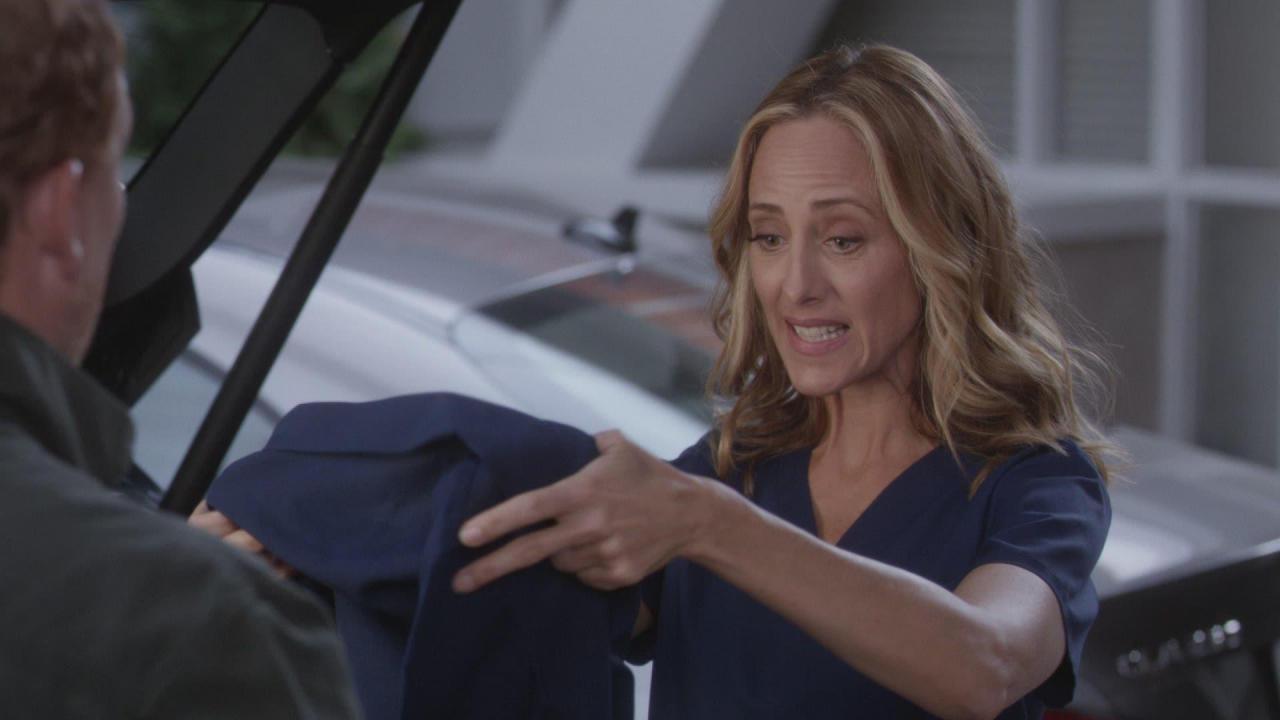Grey's Anatomy 16, 6